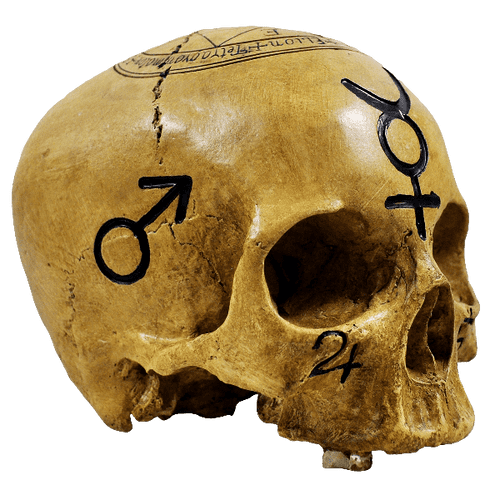 Bone Coloured Witchcraft Skull