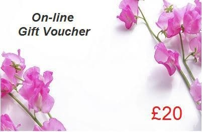 Online coupon  £20