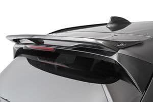 Roof wing for BMW X3 (G01)