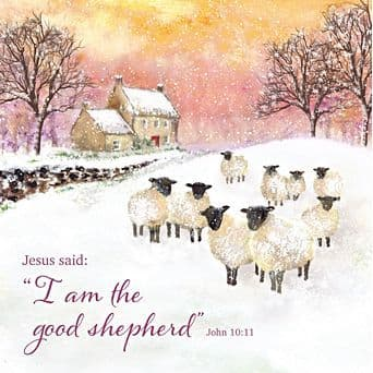 The Leprosy Mission  The Good Shepherd Christmas Cards