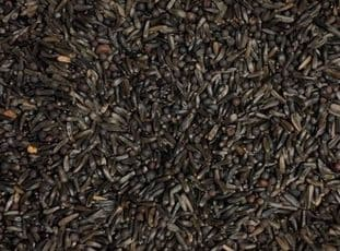 TONIC SEED MIX - 475g - AW BIRDS - OILY SEEDS FOR CHICK GROWTH - SOAK - FINCHES / CANARIES
