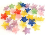 30 Frosted Acrylic lucite Flower Beads 27mm Mixed