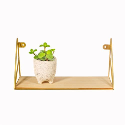 Gold  Wire Wall Shelf, Metal and Wood