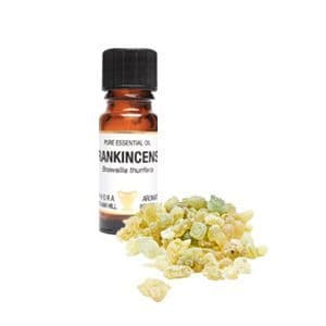 Frankincense Essential Oil 10ml - Amphora Aromatics