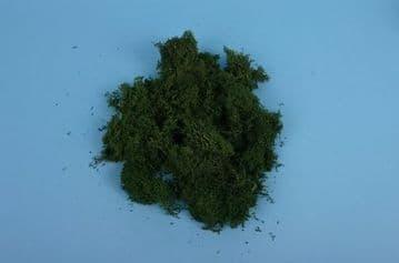 GM165 Dark Green Lichen