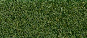 GM172 30g Moorland Grass Flock