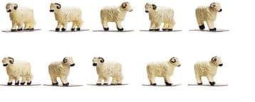 R7122 Sheep
