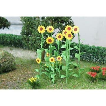 TS00676 Sunflowers (16)