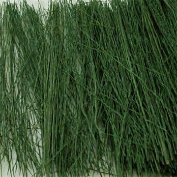 TS00894 Field Grass Dark Green (15g)
