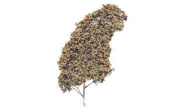WF1134 Dead Foliage Fine Leaf Foliage ##Out Of Stock##