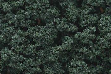 WFC147 Dark Green Bushes