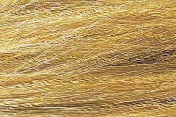 WFG172 Harvest Gold Field Grass
