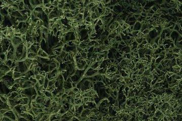 WL163 Medium Green Lichen