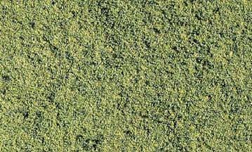 WT49 Green Blend Fine Turf