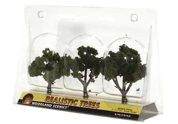 WTR1507 3-4in Medium Green Trees (3)
