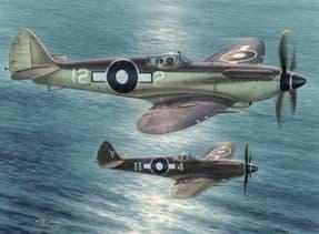SH48116 1/48 Supermarine Seafire F Mk.XV