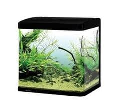 Aqua One Lifestyle 29 Aquarium Gloss Black