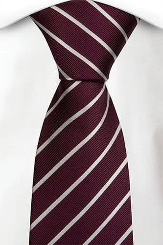 Elfed High School Tie