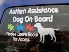 Autism Assistance Dog On Board