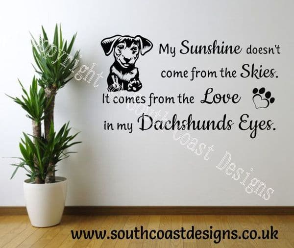 My Sunshine Doesn't Come From The Skies. It Comes From The Love In My Dachshunds Eyes
