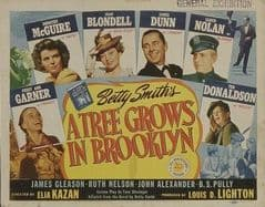 A Tree Grows in Brooklyn 1945 DVD - Dorothy McGuire / Joan Blondell