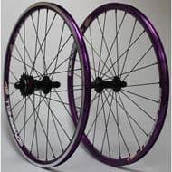 Phaze Bombshell Purple