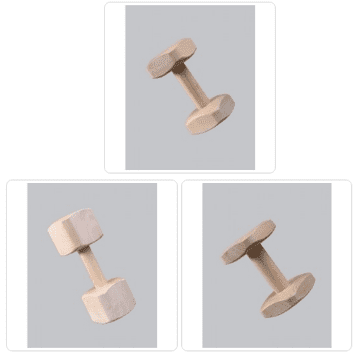 Gappay IGP/IPO Dumbbell Set