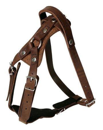 Leather Agitation Harness