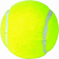 Tennis Reward Ball